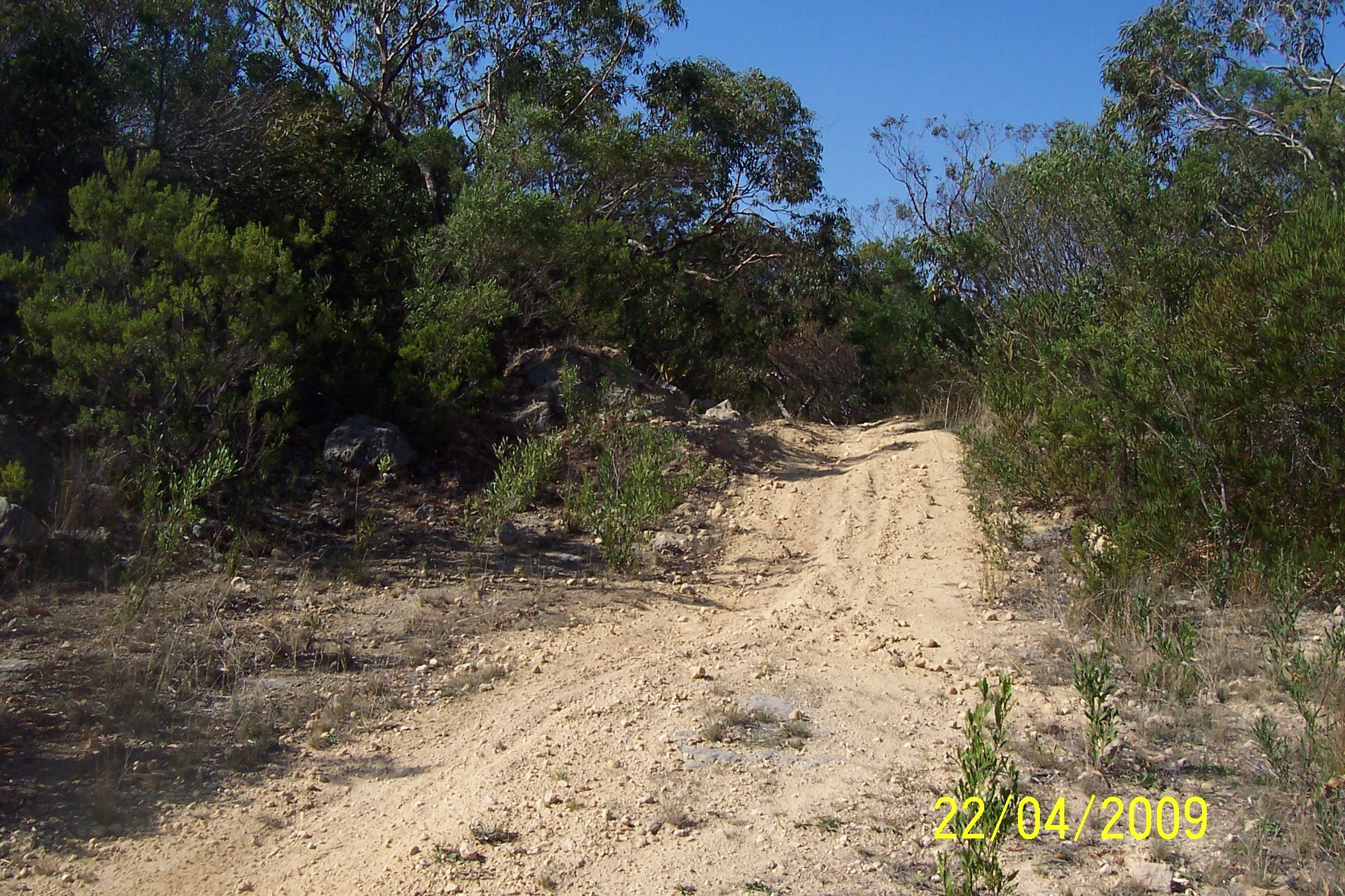 Track3 found on the Robe to Penola Road near Furner turnoff